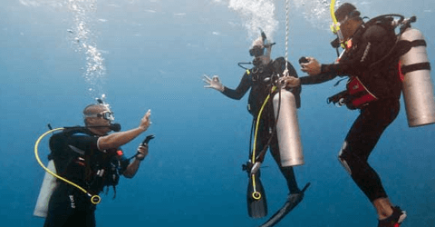 PADI MSDT diving Internship